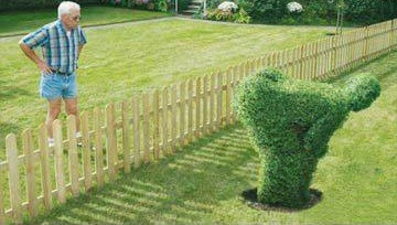how-to-annoy-your-neighbour